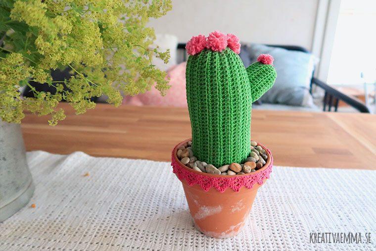 virkad kaktus i kruka
